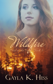 WildfireFrontFinal