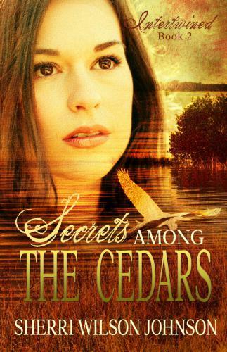 Secrets-Among-the-Cedars 03